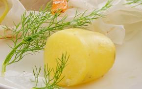 Kartoffelsalat med peberrod - Opskrifter - Arla